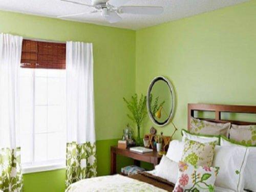 Tường có màu xanh lá nên chọn loại rèm nào