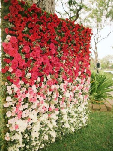 hoa tươi luôn đẹp và quyến rũ