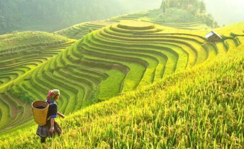 Để chuẩn bị tốt cho sự quay trở lại rực rõ hơn của du lịch Vietnam. Có lẽ lúc này có thể dành thời gian chăm chút cho không gian khách sạn. Hãy cùng xem những tiêu chí quan trọng làm nên rèm cửa khách sạn đẹp